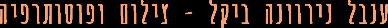 ענבל נירוונה ביקל – צילום ופוטותרפיה
